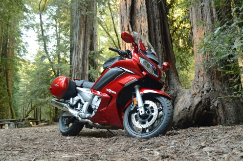 2014 FJR1300 in Armstrong Redwoods Natrual Reserve